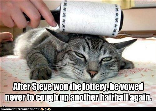 After Steve won the lottery, he vowed never to cough up another hairball again.