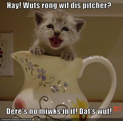 Hay! Wuts rong wif dis pitcher?  Dere's no miwks in it! Dat's wut!