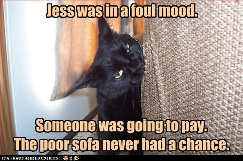 Jess was in a foul mood.