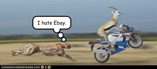 I hate Ebay.