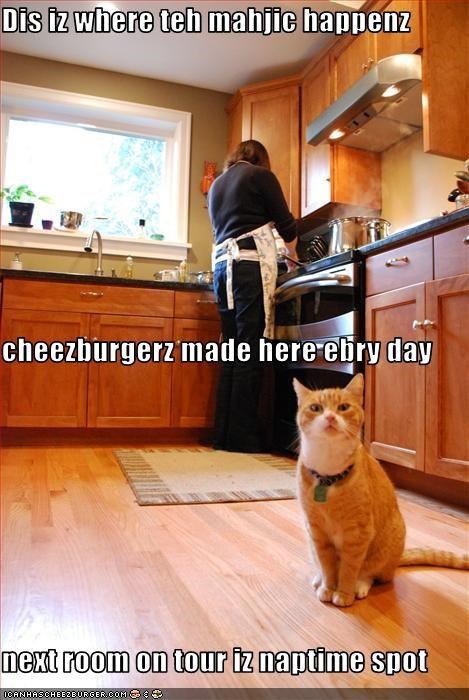 Dis iz where teh mahjic happenz cheezburgerz made here ebry day next room on tour iz naptime spot