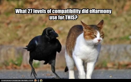 What 27 levels of compatibility did eHarmony use for THIS?