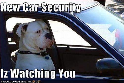New Car Security  Iz Watching You