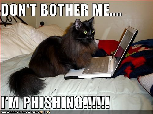 DON'T BOTHER ME....  I'M PHISHING!!!!!!