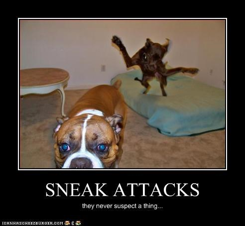SNEAK ATTACKS