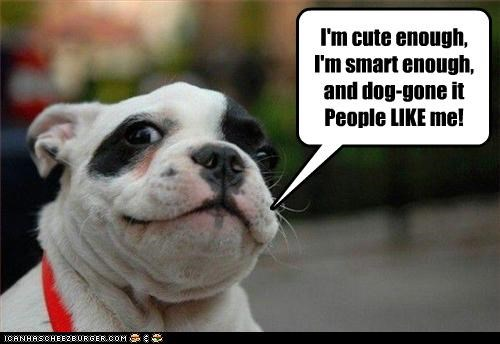 I'm cute enough, I'm smart enough,  and dog-gone it People LIKE me!