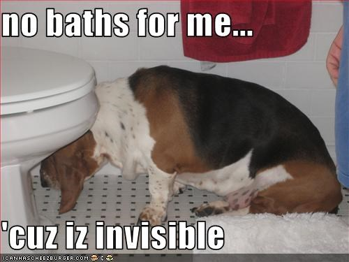 no baths for me...  'cuz iz invisible