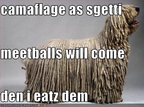camaflage as sgetti meetballs will come den i eatz dem