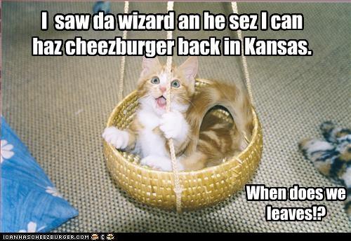 I  saw da wizard an he sez I can haz cheezburger back in Kansas.