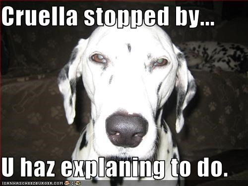 Cruella stopped by...  U haz explaning to do.