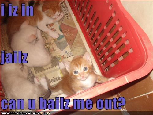 i iz in  jailz  can u bailz me out?