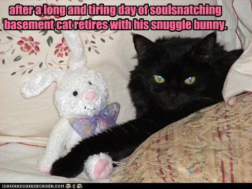 after a long and tiring day of soulsnatching basement cat retires with his snuggle bunny.