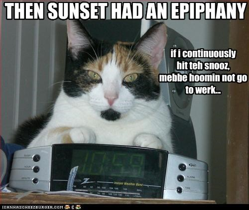 THEN SUNSET HAD AN EPIPHANY