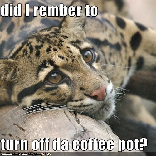 did I rember to   turn off da coffee pot?