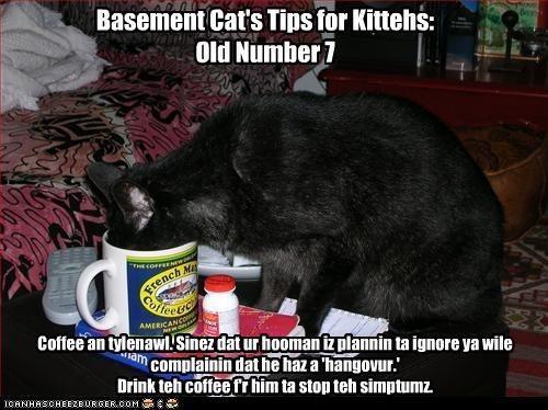 Basement Cat's Tips for Kittehs: Old Number 7