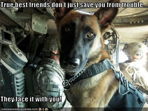 True best friends don't just save you from trouble....  They face it with you!