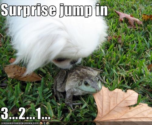 Surprise jump in   3...2...1...