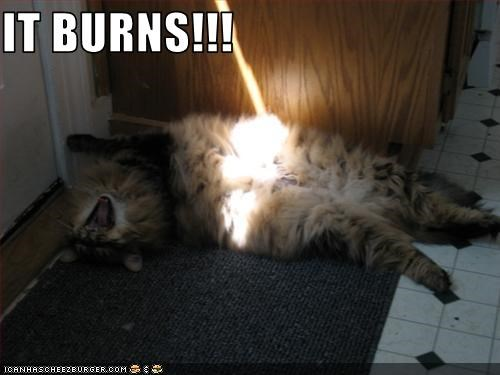 IT BURNS!!!
