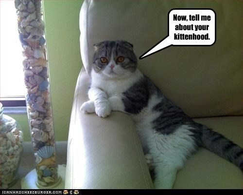 Now, tell me about your kittenhood.