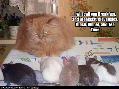 I will call you Breakfast, 2nd Breakfast, elevensies, Lunch, Dinner, and Tea Time