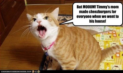 But MOOOM! Timmy's mom made cheezburgers for everyone when we went to his house!
