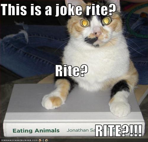This is a joke rite? Rite? RITE?!!!