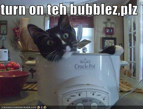 turn on teh bubblez,plz