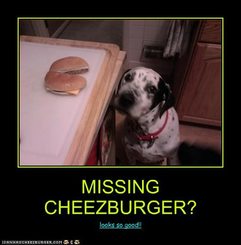 MISSING CHEEZBURGER?