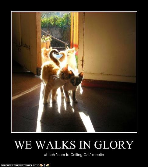 WE WALKS IN GLORY