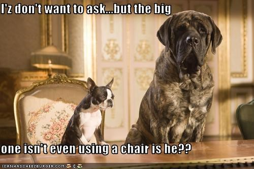 I'z don't want to ask...but the big  one isn't even using a chair is he??