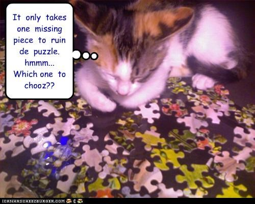 It  only  takes  one  missing  piece  to  ruin  de  puzzle.  hmmm...  Which one  to  chooz??