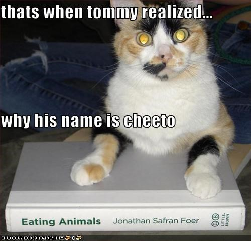 thats when tommy realized... why his name is cheeto