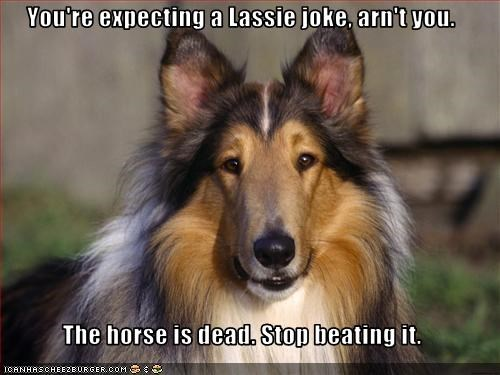 You're expecting a Lassie joke, arn't you.  The horse is dead. Stop beating it.