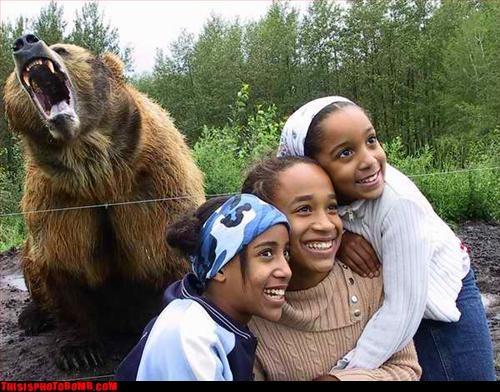 Animal Bomb,bears,Impending Doom,kids,not a good combo