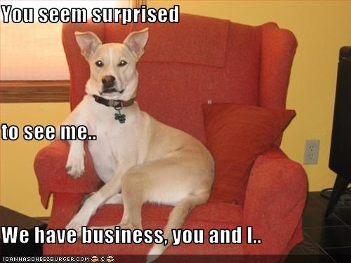 business,intimidating,menacing,surprise,whatbreed