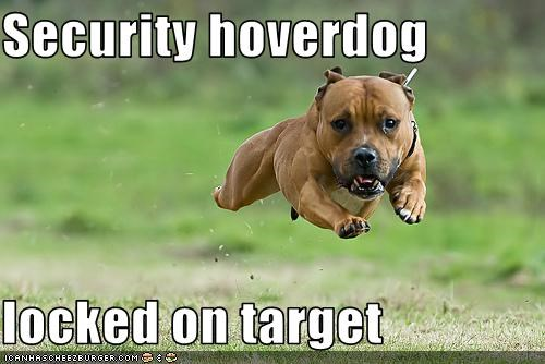 Security hoverdog  locked on target