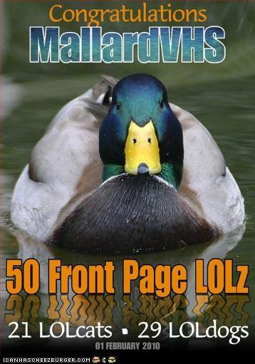CONGRATULATIONS MallardVHS .. 50 Front Page LOLz . . . . .