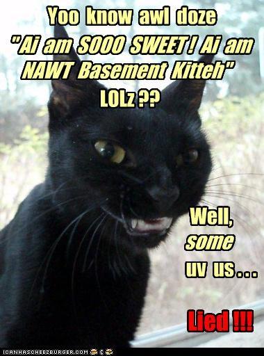 """ Ai  am  SOOO  SWEET !  Ai  am  NAWT  Basement  Kitteh"""