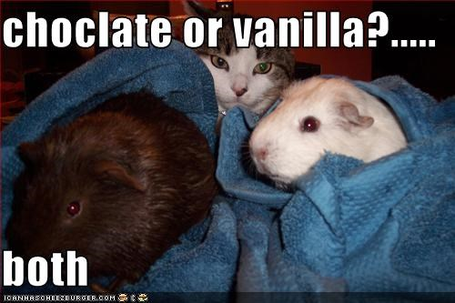 choclate or vanilla?.....  both