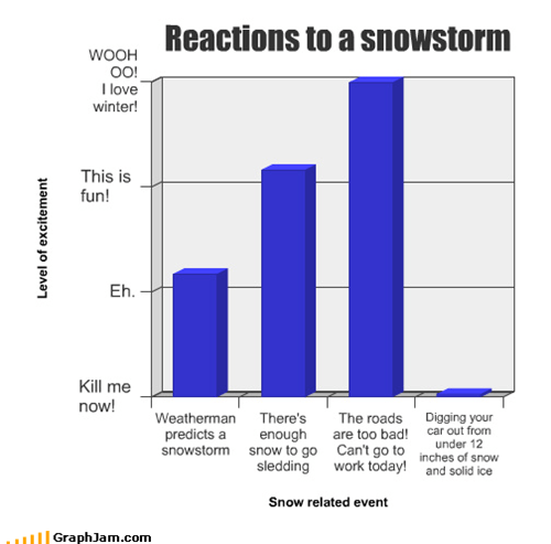 Reactions to a snowstorm