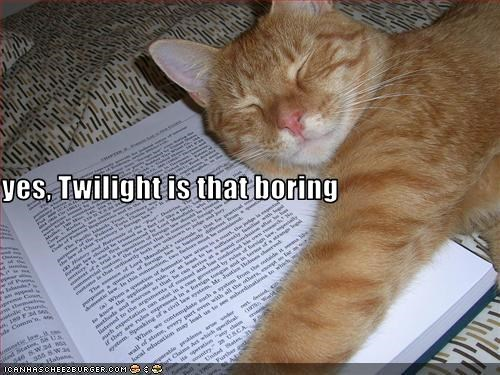 yes, Twilight is that boring