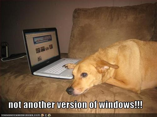 not another version of windows!!!