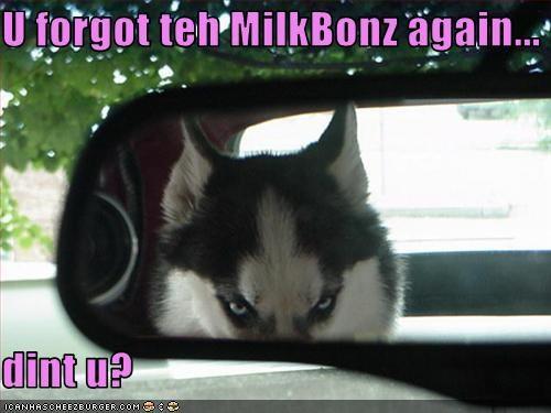 U forgot teh MilkBonz again...  dint u?