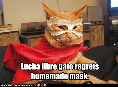 Lucha Libre Meme HF3E9663E
