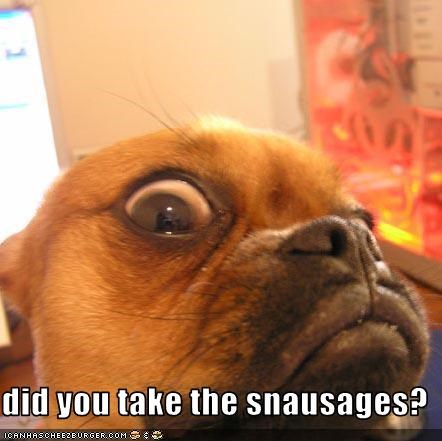 did you take the snausages?
