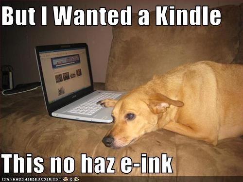 But I Wanted a Kindle  This no haz e-ink