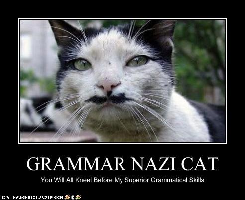 Grammar Nazi Cat.