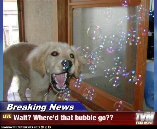 Breaking News - Wait? Where'd that bubble go??
