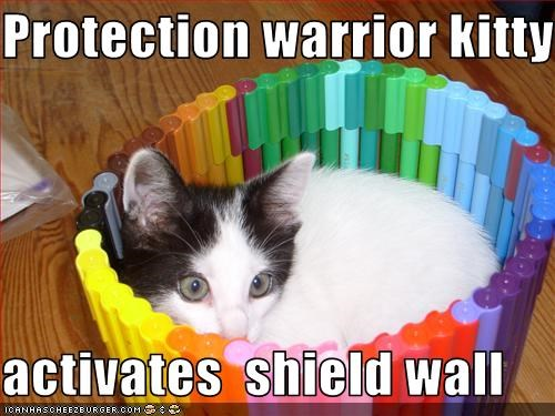 Protection warrior kitty   activates  shield wall