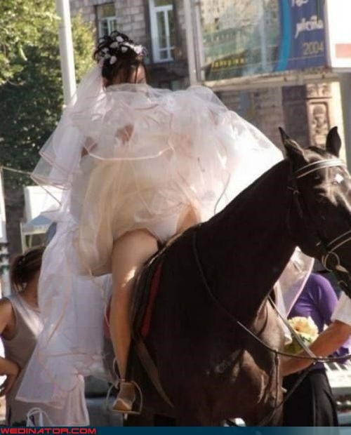 accident,bride,fashion is my passion,horse,miscellaneous-oops,surprise,technical difficulties,upskirt,Wedding Dress Flashing,Wedding panties